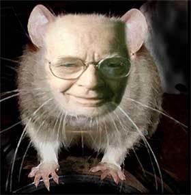 Skinner większość badań przeprowadzał na zwierzętach. źródło: www.glogster.com
