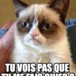 Nie widzisz, że mnie wku*wiasz?- tak brzmi polskie tłumaczenie słów naburmuszonego kota. Jeśli chcecie poznać wiecej francuskich wulgaryzmów, obejrzyjcie filmik Pierre'a.