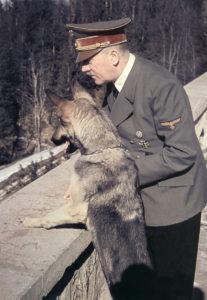 Adolf Hitler z suczką Blondi